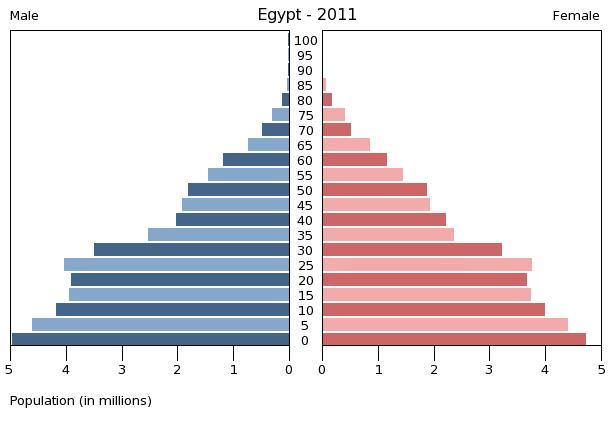 populationPyramid.jpeg