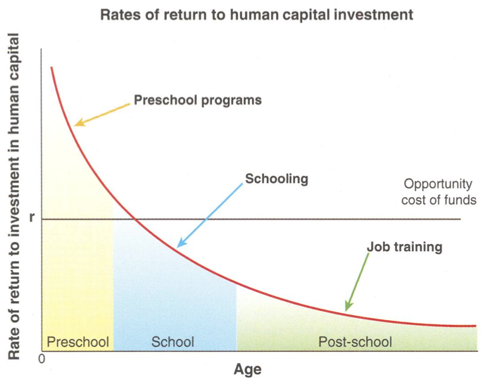 rates of return to human capital